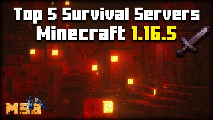 Top 5 Minecraft 1.16.5 Survival Servers