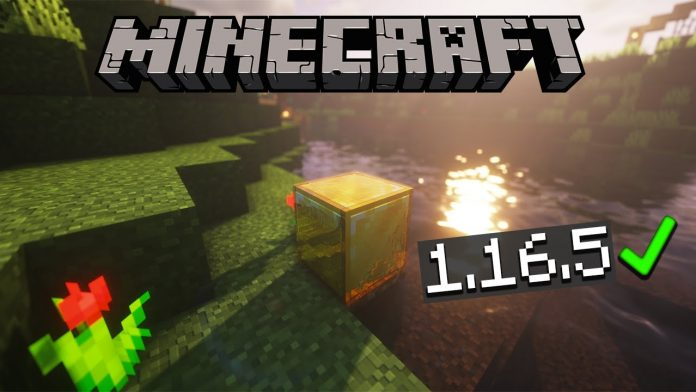 Top 5 Texture Packs Minecraft 1.16.5