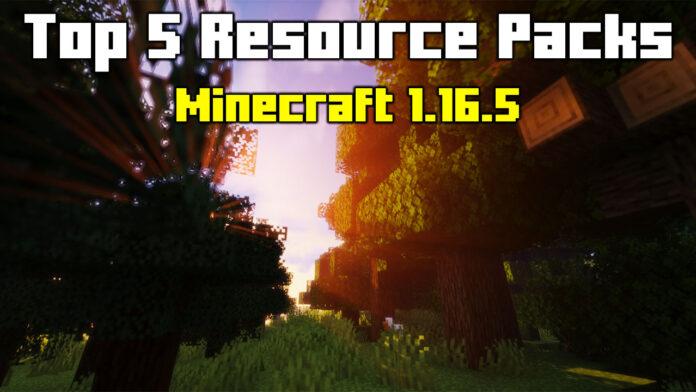 Top 5 Resource Packs Minecraft 1.16.5