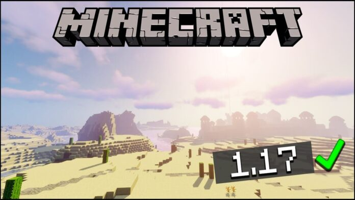 TOP 5 BEST SEEDS for MINECRAFT 1.17