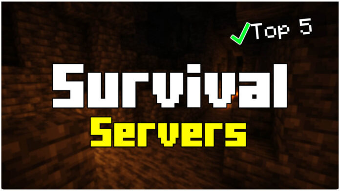 Top 5 Survival Minecraft 1.17.1 Servers